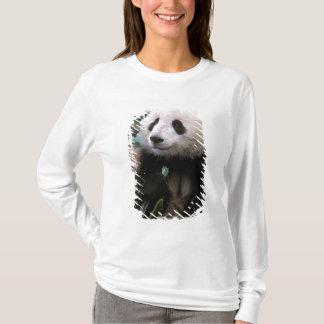T-shirt L'Asie, Chine, Chengdu. Sanctuaire de panda géant
