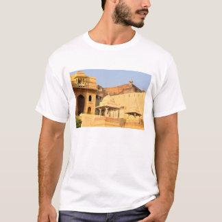 T-shirt L'Asie, l'Inde, le Ràjasthàn, Amer ambre).
