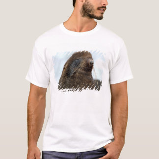 T-shirt L'Asie, Russie, Extrême Orient russe, Kamchatkan