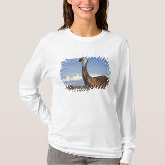 T-shirt L'Australie, Australie occidentale. Émeu (Dromaius