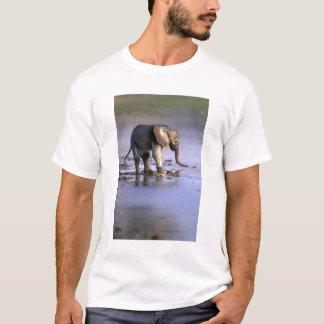 T-shirt Le Botswana, réservation de jeu de Moremi, jeune