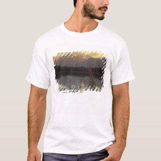 T-shirt Le Canada, Alberta, Banff. Lever de soleil