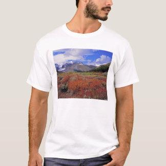 T-shirt Le Canada, Alberta, Banff NP. Fleur d'airelles