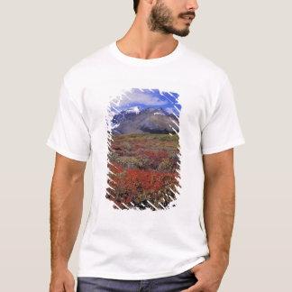 T-shirt Le Canada, Alberta, Banff NP. Les airelles
