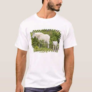 T-shirt Le Canada, Alberta, parc national de jaspe,