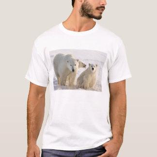 T-shirt Le Canada, Manitoba, baie de Hudson, Churchill. 5