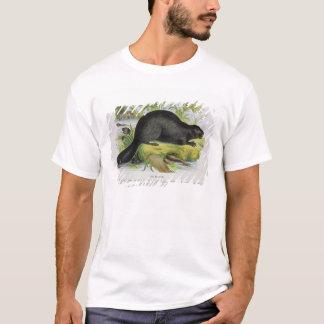 T-shirt Le castor, pub éducatif d'illustration. par le S