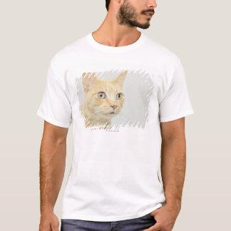 T-shirt Le chat avec des yeux s'ouvrent au loin