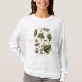 """T-shirt Le concombre de jardin, plaquent 4 """"d'un de fines"""