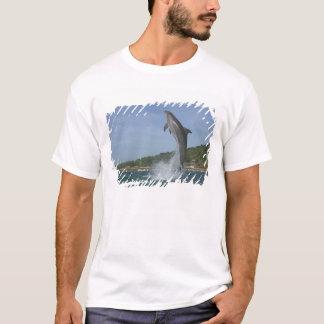 T-shirt Le dauphin sautant, Roatan, îles de baie, Honduras