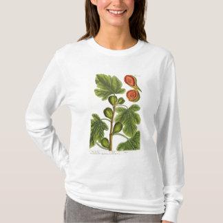 """T-shirt Le figuier, plaquent 125 """"d'un de fines herbes"""