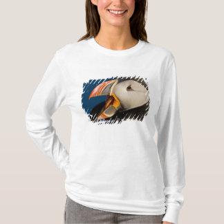 T-shirt Le macareux atlantique, un oiseau marin pélagique,