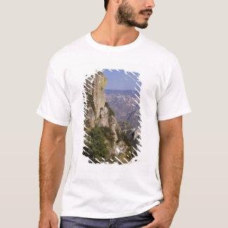 T-shirt Le Mexique, état de chiwawa, canyon de cuivre. CES