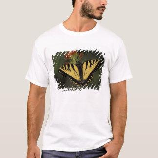 T-shirt Le Michigan, lac Houghton. Machaon de tigre dessus