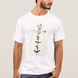 """T-shirt Le moût de St John, plaquent 15 """"d'un de fines"""