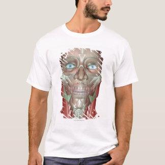 T-shirt Le Musculoskeletan de la tête et du cou