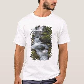 T-shirt Le Nouveau Brunswick, Canada. Dickson tombe dans
