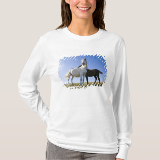 T-shirt Le R-U, Pays de Galles, Brecon balise le NP. Poney