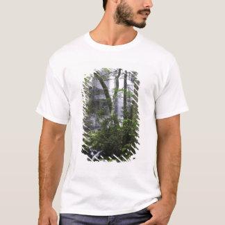 T-shirt Le randonneur admire des automnes de branche