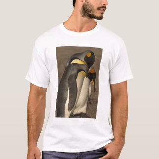 T-shirt Le Roi pingouins (patagonica d'Aptenodytes P.)