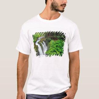 T-shirt Le solénoïde Duc tombe en parc national olympique