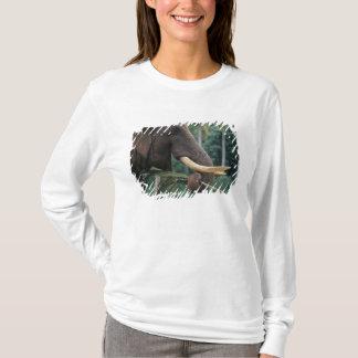 T-shirt Le Sri Lanka, éléphant alimente à l'éléphant 2 de