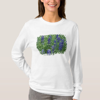 T-shirt Le Texas, lac Buchanan. Bluebonnet de Texas et