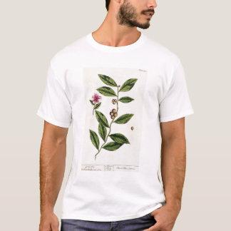 """T-shirt Le thé vert, plaquent 351 """"d'un de fines herbes"""
