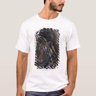 T-shirt Le tigre repose dans l'herbe grande