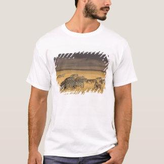 T-shirt Le zèbre de Burchell, burchellii d'Equus,