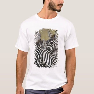 T-shirt Le zèbre de Burchelli, burchellii d'Equus, masai