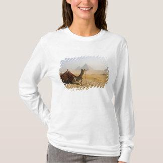 T-shirt L'Egypte, le Caire. Un chameau solitaire regarde