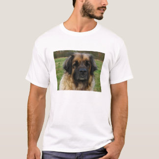 T-shirt leonberger 2.png