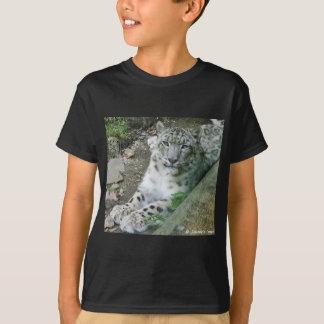 T-shirt Léopard de neige 1