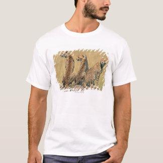 T-shirt Léopards regardant loin