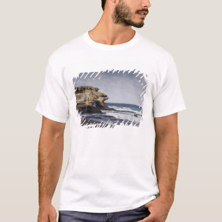 T-shirt L'Equateur, le Galapagos, Santiago aka James).