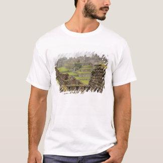 T-shirt Les Amériques, Pérou, Machu PIcchu. L'antique