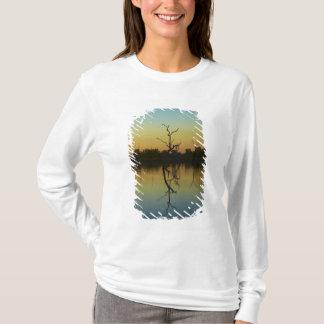 T-shirt Les arbres morts se sont reflétés dans la lagune