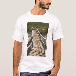 T-shirt Les BAHAMAS, île de Bahama grande, côté oriental :
