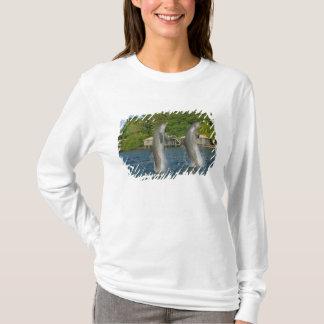 T-shirt Les dauphins sautant, Roatan, îles de baie,