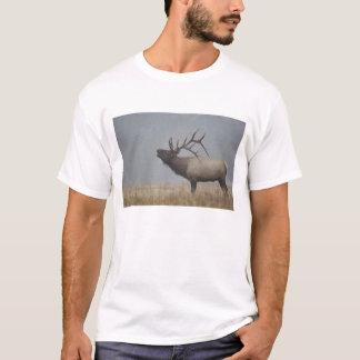 T-shirt Les élans de Taureau dans la neige donnent