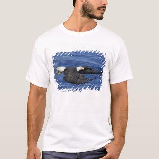 T-shirt Les Etats-Unis, Alaska, aigle chauve de péninsule