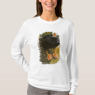 T-shirt Les Etats-Unis, Alaska, îles de Pribilof, St Paul.