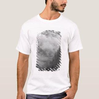 T-shirt Les Etats-Unis, Alaska, Juneau, forêt tropicale