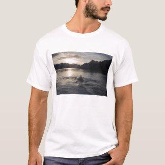 T-shirt Les Etats-Unis, Alaska, parc national de baie de