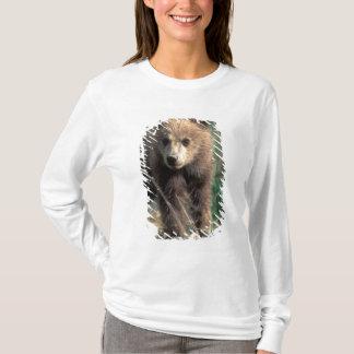 T-shirt Les Etats-Unis, Alaska, parc national de Denali,