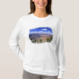 T-shirt Les Etats-Unis, Arizona, parc national de canyon