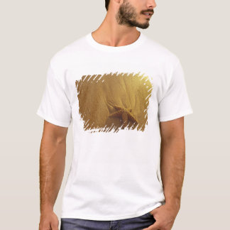 T-shirt Les Etats-Unis, Hawaï, Maui, Maui, Kihei, étoiles