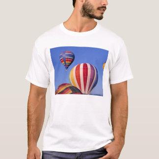 T-shirt Les Etats-Unis, Idaho, vallée de Teton. À air