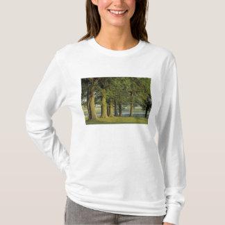 T-shirt Les Etats-Unis, Kentucky, Lexington. Rangée des